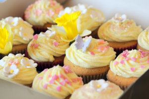 LemonCupcakes