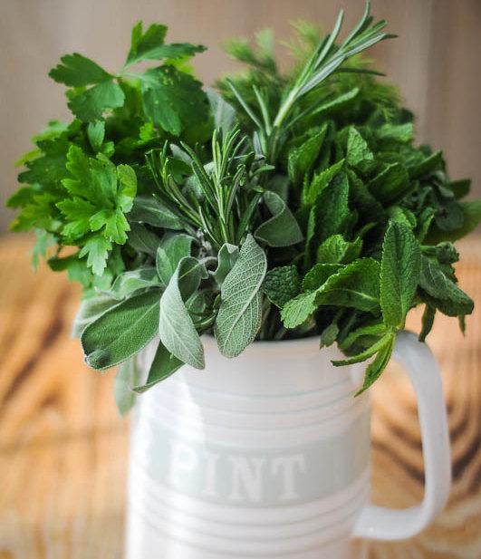 Herbs-1-2