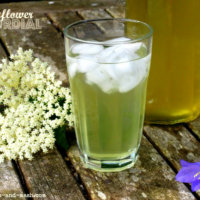 elderflower-cordial