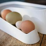 Omlet_egg_ramp